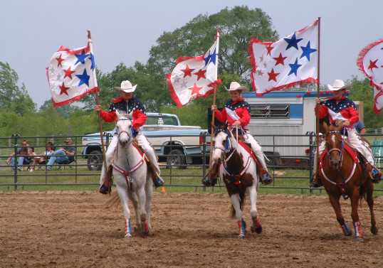 different types of horse competitions