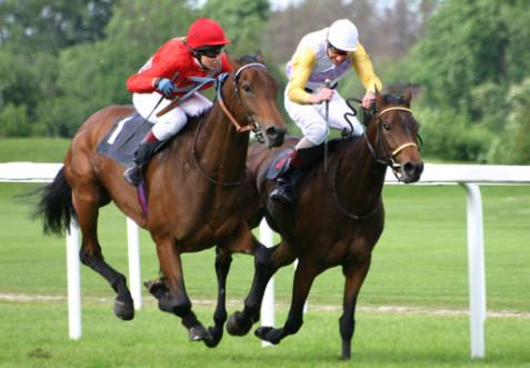 horse sports Olympics