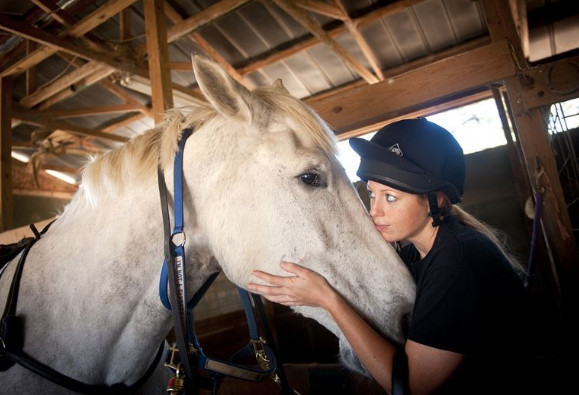 equestrian sports-hors sports